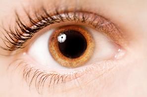 Pupille Descary descary optométristes opticiens Montréal, Plateau Mont-Royal, rue St-Denis