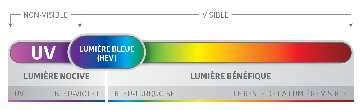 Spectre lumière bleue Descary Descary optométristes opticiens Montréal Plateau Mont-Royal rue St-Denis